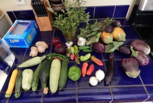 squashes, beets, peppers, onions, egg plants, and herbs