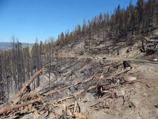 Ferguson Fire:  Wawona Road