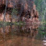 Oak Creek Reflections